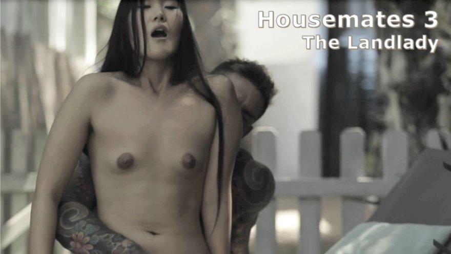 Housemates 3 - The Landlady